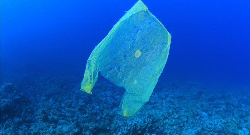 iswa, ocean, clean up, marine debris, plastics, waste, pollution