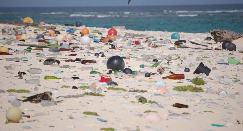 iswa, litter, marine debris, waste, pollution, micreofibres, plastics, oceans