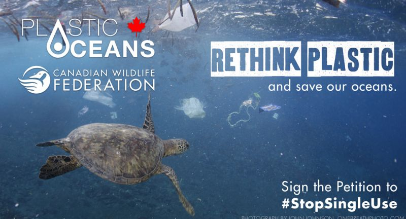 plastics, oceans, single use plastics, wildlife canada