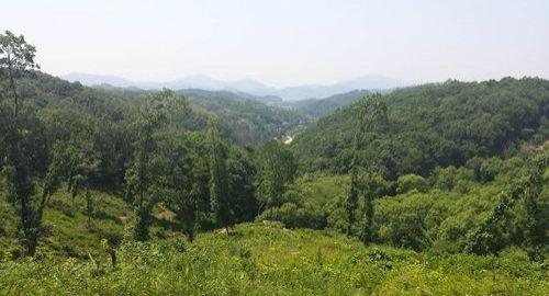 WELTEC BIOPOWER, anaerobic digestion, south korea, biogas