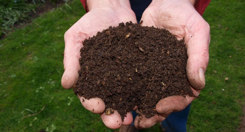 compost, anaerobic digestion, plastics, pollution, bioplastics