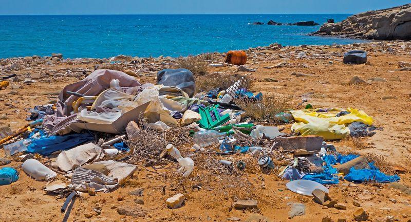 waste free oceans, plastic, waste, litter, São Miguel