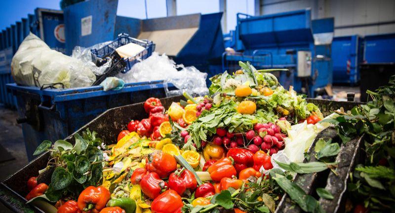 Grossmarkt, Berlin-Beusselstrasse, Wegschmeissen, Muell, Lebensmittel, in, den, Muell, Lebensmittelvernichtung, Abfall, Muellhalde, Food, Waste