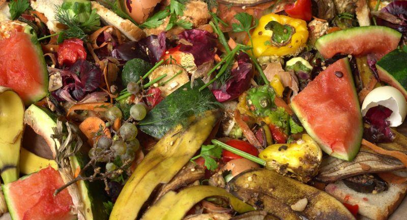 waste, peel, scraps, organic, food, biodegradable, compost, composting, decomposing, eco, ecology, environment, environmental, fertilizer, fruit, garbage, garden, gardening, green, greens, heap, home, household, kitchen, landfill, landfilling, mix, mulch, pail, peelings, pile, pollution, recycle, recycling, reduce, reduction, reuse, soil, sorting, trash, veg, vegetable, zero