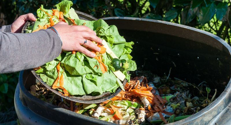 Food, Heap, NATURE, bin, bio, compost, composte, composting, container, decay, decompose, earth, environment, environmental, fertilizer, fruit, garbage, garden, green, hand, household, kitchen, leaf, organic, peel, plant, recycling, scraps, vegetable, waste, compost, composting, hands, recycling, organic, garbage, vegetable, container, waste, food, bin, green, garden, plant, fruit, nature, earth, heap, scraps, kitchen, leaf, environment, decay, peel, decompose, composte, household, bio, environmental, fertilizer