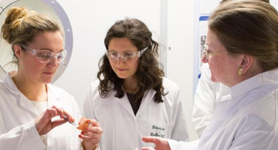 bath university, microbial fuel cell, Dr. Mirella Di Lorenzo