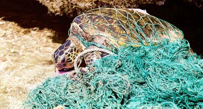 Mike Rithie, MRA Consulting, plastic pollution, oceans, marine debris