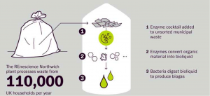 DONG Energy, Novozymes, municipal solid waste, enyzmes, biogas