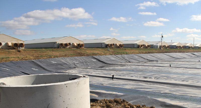 Roselin Alternative energy, anaerobic digestion, biogas